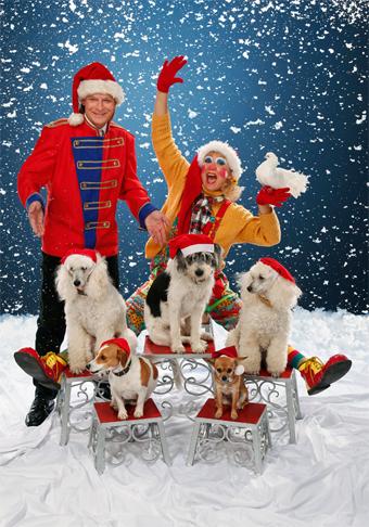Weihnachts_Show_Programm